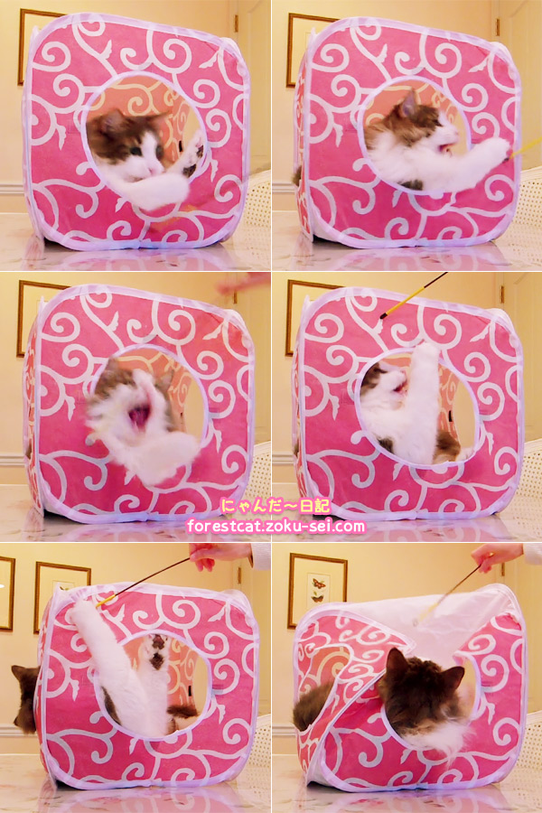 猫おもちゃ キャットプレイキューブ 可愛いピンク