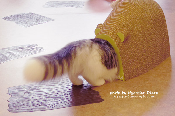 てまりのおうち ラガマフィンのシフォン ふわふわのしっぽ